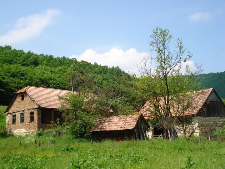 satul copilăriei