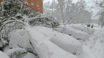 ninsoare madrid daune