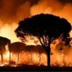 incendiu catalonia